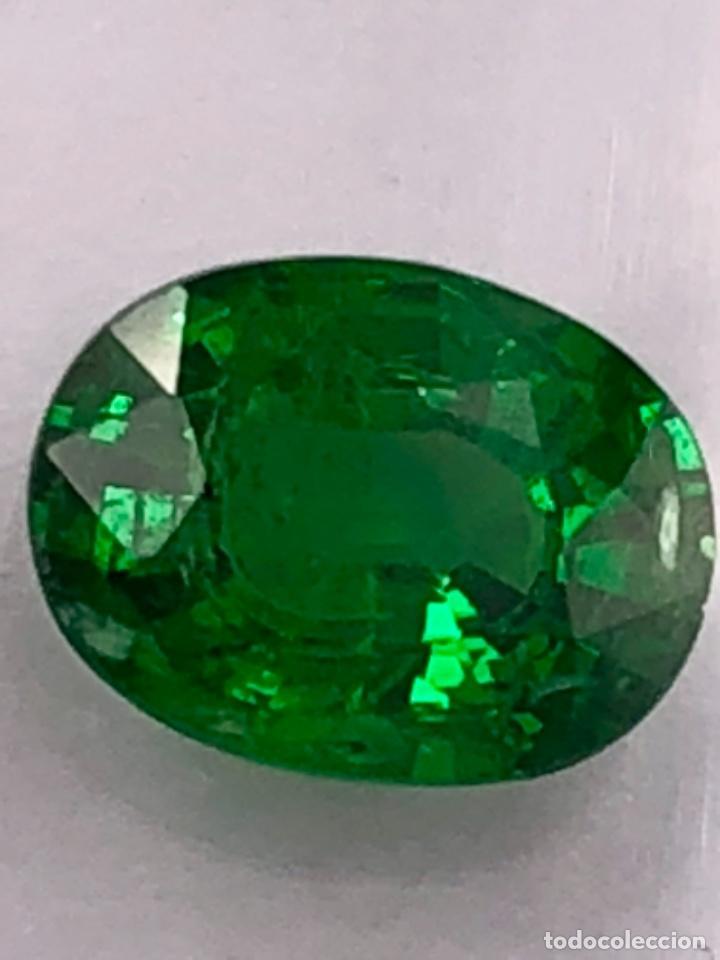 TSAVORITA 1.09 CT - IGI CERTIFICADO Y ENCAPSULADO (Coleccionismo - Mineralogía - Gemas)