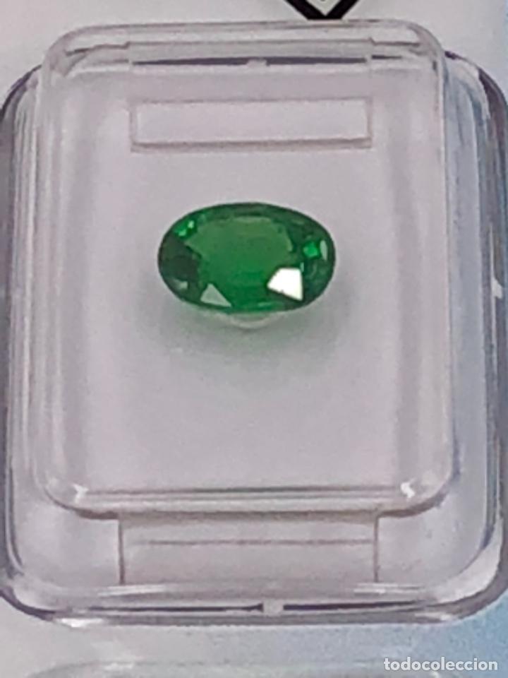 Coleccionismo de gemas: TSAVORITA 1.09 CT - IGI CERTIFICADO Y ENCAPSULADO - Foto 2 - 132695022