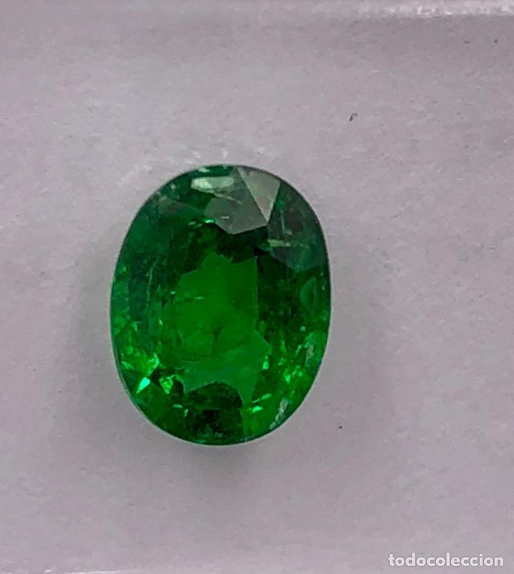 Coleccionismo de gemas: TSAVORITA 1.09 CT - IGI CERTIFICADO Y ENCAPSULADO - Foto 9 - 132695022