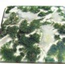 Coleccionismo de gemas: 15,20 CT AGATA NATURAL BOSQUE MUSGO. Lote 159735326