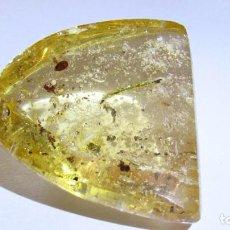 Coleccionismo de gemas: 34,50 CT COPAL - AMBAR NATURAL CON INSECTOS POLEN CON MILES DE AÑOS DE ANTIGUEDAD. Lote 164818646