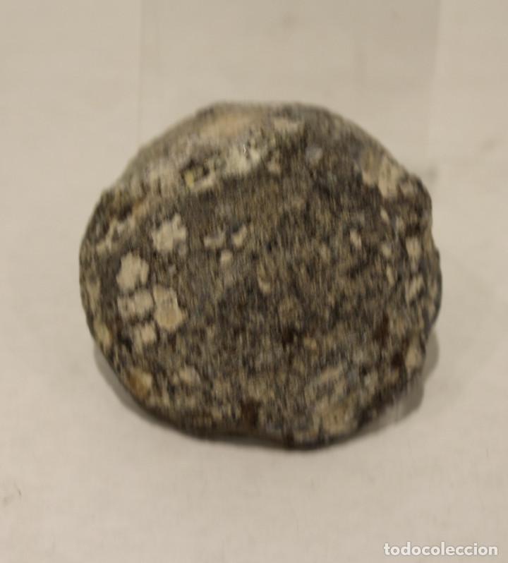Coleccionismo de gemas: Geoda, interior de cuarzo con destellos de pirita. - Foto 2 - 167731404