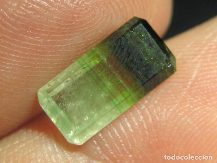 (031) MINERALES. TURMALINA MULTICOLOR. MADAGASCAR. (Coleccionismo - Mineralogía - Gemas)