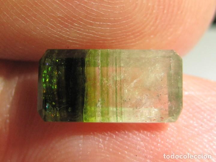 Coleccionismo de gemas: (031) MINERALES. TURMALINA MULTICOLOR. MADAGASCAR. - Foto 2 - 171286544