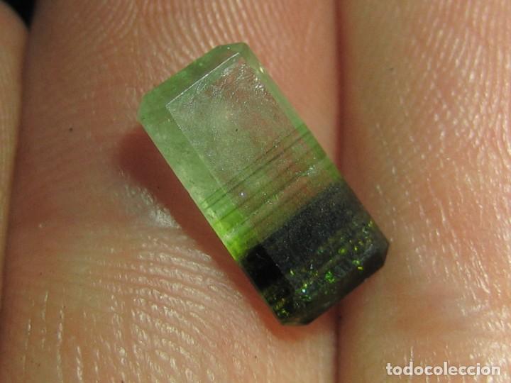 Coleccionismo de gemas: (031) MINERALES. TURMALINA MULTICOLOR. MADAGASCAR. - Foto 3 - 171286544