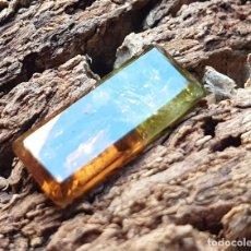 Coleccionismo de gemas: TURMALINA BICOLOR GEMA. Lote 203483080