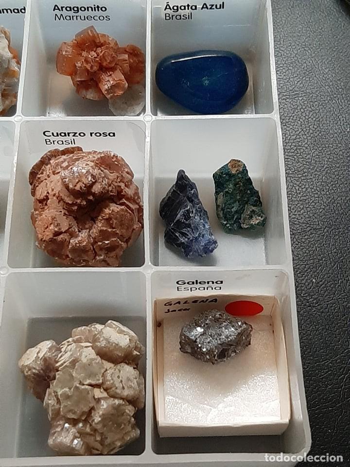 Coleccionismo de gemas: colección minerales, azurita amatista oro opalo cuarzo mica aragonita agazta azul galena... - Foto 4 - 222245605