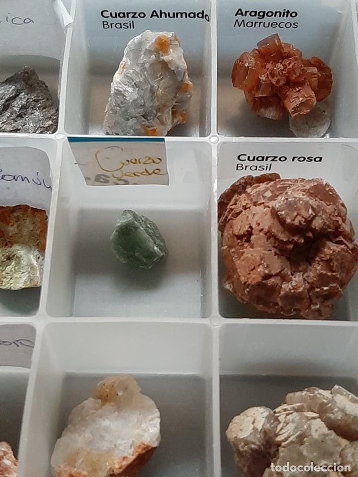 Coleccionismo de gemas: colección minerales, azurita amatista oro opalo cuarzo mica aragonita agazta azul galena... - Foto 5 - 222245605