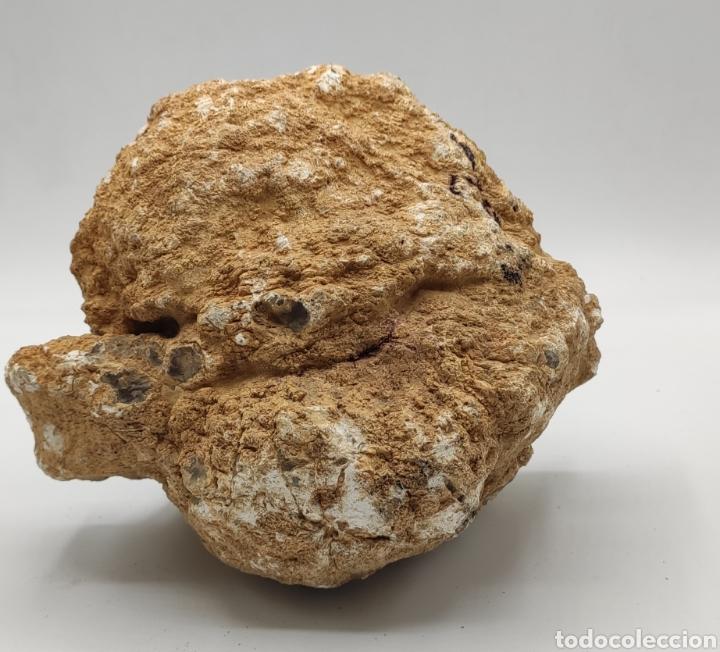 Coleccionismo de gemas: Geoda gran tamaño. Vean fotos. - Foto 7 - 235919285