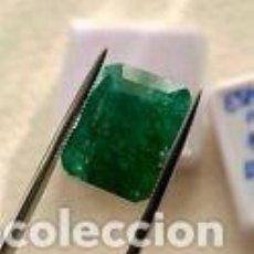 Coleccionismo de gemas: ESMERALDA NATURAL 10,92 KILATES.. Lote 270223428