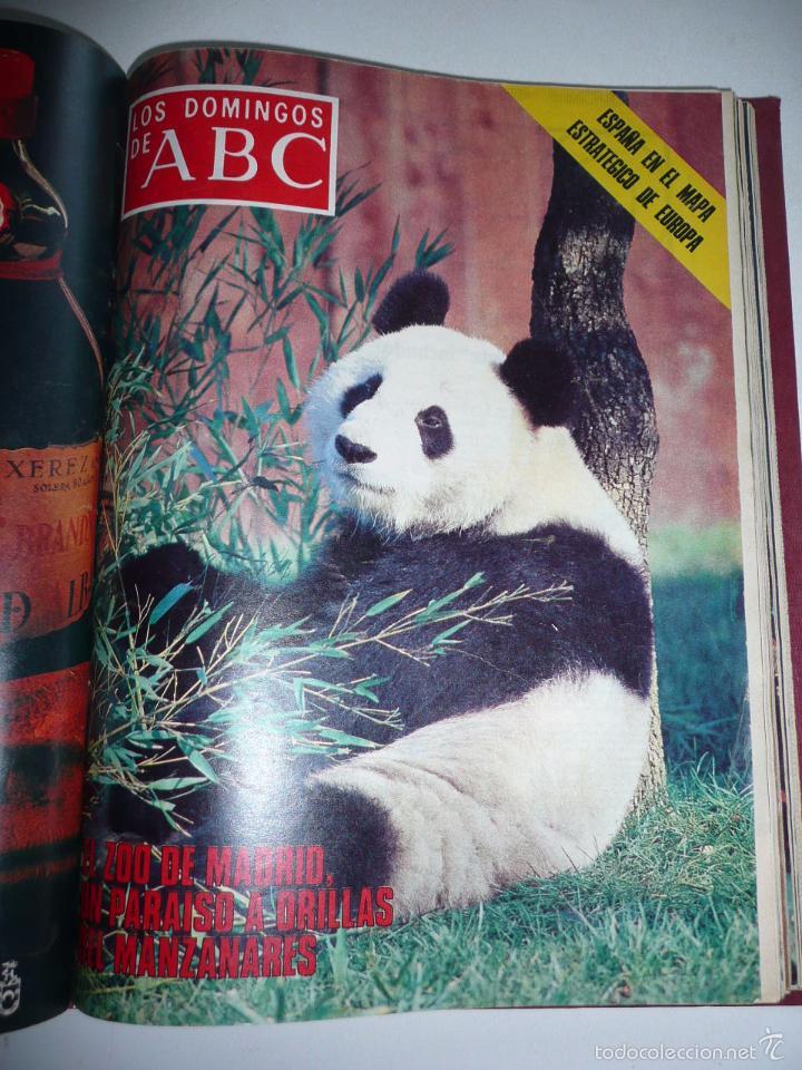 Coleccionismo de Los Domingos de ABC: Los domingos de ABC 23 números sueltos años 1977 y 1979 en 2 tomos - Suplemento semanal de ABC - Foto 9 - 57359188