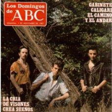 Coleccionismo de Los Domingos de ABC: 1987. GABINETE CALIGARI. RAFAEL HERNANDO. GERMAN COPPINI. ROSARIO FLORES. . Lote 122246519