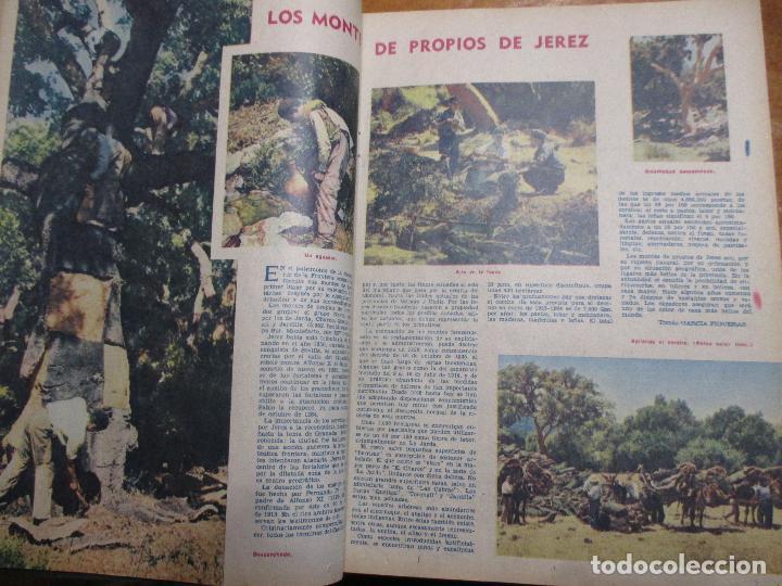 Coleccionismo de Los Domingos de ABC: Los domingos de ABC 4º trimestre 1960 Cine, Balduino y Fabiola Lleida Ortiz Echagüe camión Ebro - Foto 7 - 194130936