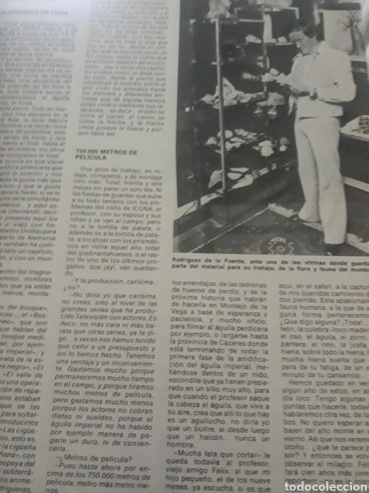 Coleccionismo de Los Domingos de ABC: ENTREVISTA A FELIX RODRÍGUEZ DE LA FUENTE. TICO MEDINA AÑO 1975 . 4 PAGINAS - Foto 4 - 194530110