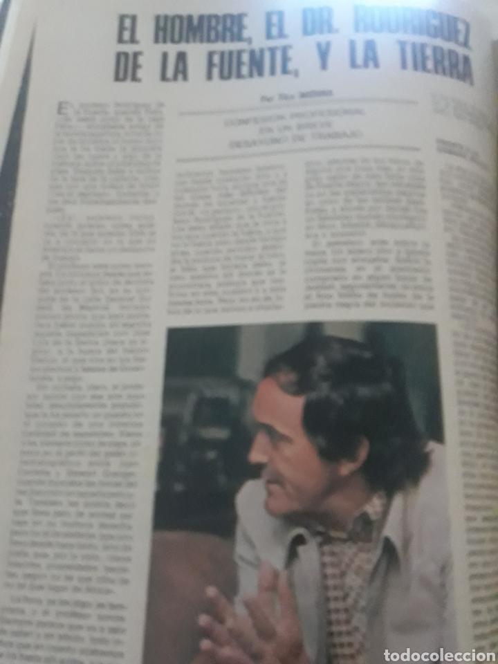 ENTREVISTA A FELIX RODRÍGUEZ DE LA FUENTE. TICO MEDINA AÑO 1975 . 4 PAGINAS (Coleccionismo - Revistas y Periódicos Modernos (a partir de 1.940) - Los Domingos de ABC)