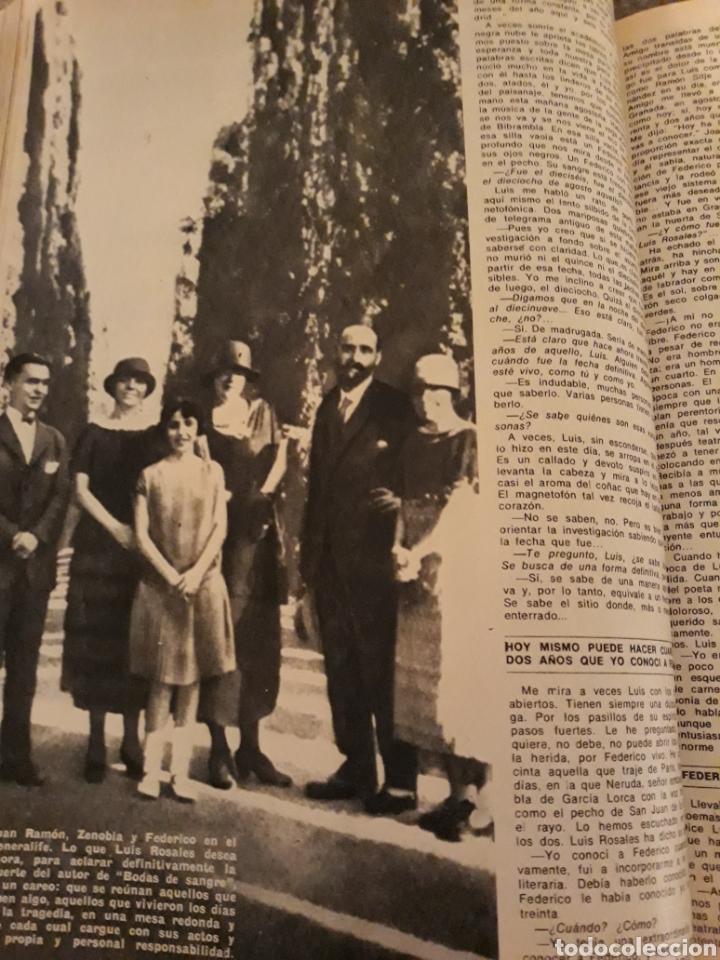 Coleccionismo de Los Domingos de ABC: INTRODUCCIÓN A LA MUERTE DE FEDERICO GARCÍA LORCA. LUIS ROSALES . TICO MEDINA . AÑO 1972. 5 PAGINAS - Foto 2 - 194989301