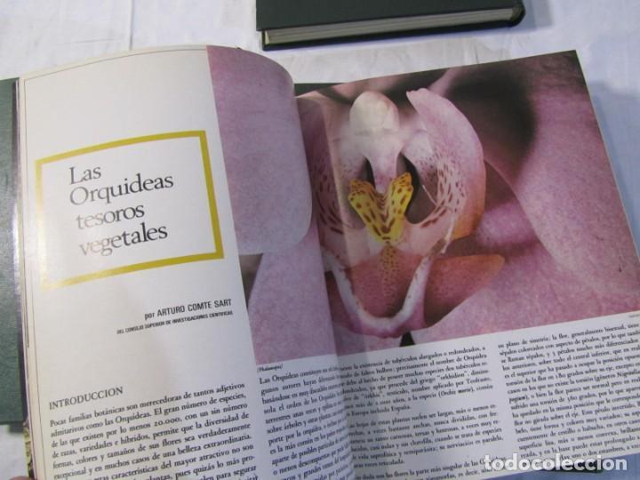 Coleccionismo de Los Domingos de ABC: 24 números de Ronda Iberia, revista de vuelo, encuadernadas en 4 volúmenes, Años 70-80 - Foto 11 - 198570291