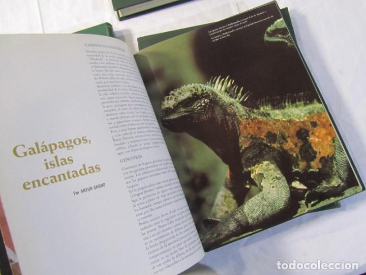 Coleccionismo de Los Domingos de ABC: 24 números de Ronda Iberia, revista de vuelo, encuadernadas en 4 volúmenes, Años 70-80 - Foto 14 - 198570291