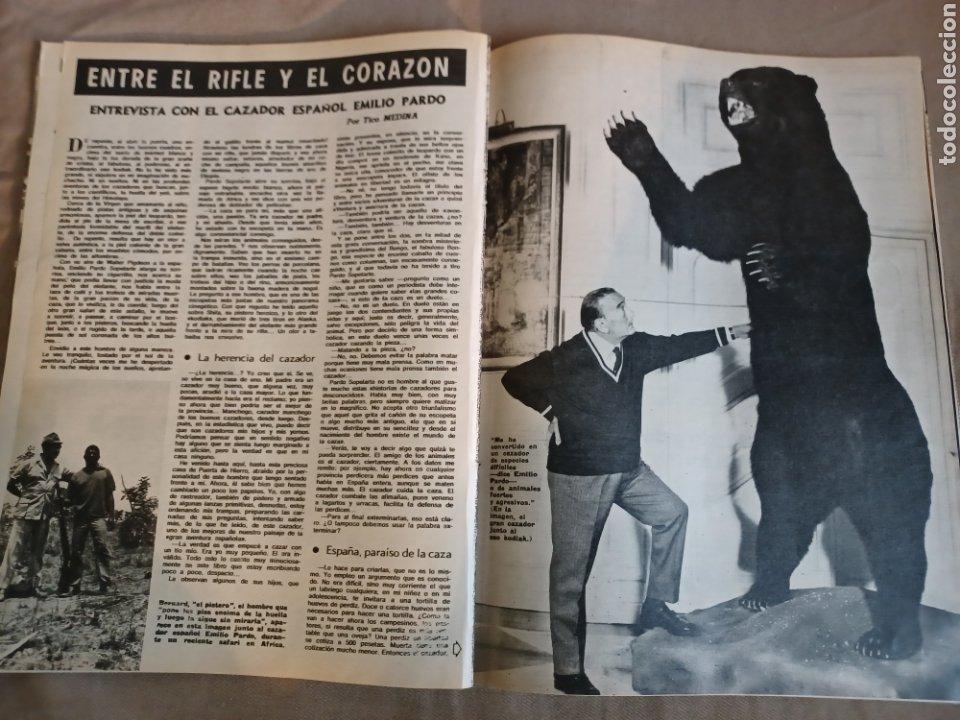 Coleccionismo de Los Domingos de ABC: REVISTA 1973 CARTAS ENTRE MENENDEZ PIDAL Y SAINZ RODRÍGUEZ- REPORTAJE MARI FRANCIS CAZADOR E.PARDO - Foto 9 - 248450035