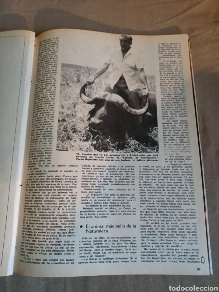 Coleccionismo de Los Domingos de ABC: REVISTA 1973 CARTAS ENTRE MENENDEZ PIDAL Y SAINZ RODRÍGUEZ- REPORTAJE MARI FRANCIS CAZADOR E.PARDO - Foto 10 - 248450035