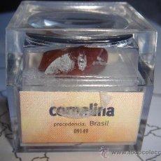 Mineral Cornalina