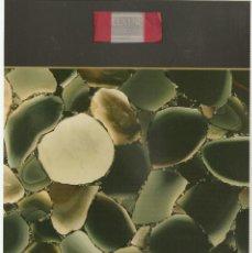 Coleccionismo de minerales: 22. JASPER. Lote 40806548