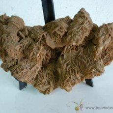 Coleccionismo de minerales: ROSA DEL DESIERTO 24 X 13 CM. Lote 50465632