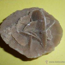 Coleccionismo de minerales: MINERAL ROSA DEL DESIERTO. Lote 50468777
