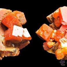 Coleccionismo de minerales: *** GRANDES CRISTALES DE VANADINITA, TAOUZ - FILON 12 (MARRUECOS) ***. Lote 99318654