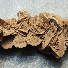 Coleccionismo de minerales: GRAN ROSA DEL DESIERTO O ROSA DE LOS VIENTOS. Lote 56050382