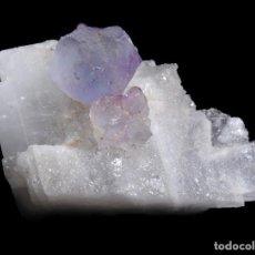 Coleccionismo de minerales: *** PRECIOSA FLUORITA SOBRE CALCITA. EL HAMMAN (MARRUECOS) ***. Lote 98677459