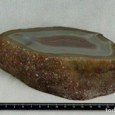 Coleccionismo de minerales: ÁGATA PULIDA. YACIMIENTO 'LA LIMEÑA' ARTIGAS. URUGUAY. PESO 1.274 GR. DIMENSIONES 110 X 170 MM. Lote 69902565