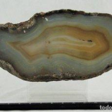 Coleccionismo de minerales: ÁGATA PULIDA. YACIMIENTO 'LA LIMEÑA' ARTIGAS. URUGUAY. PESO 593 GR. DIMENSIONES 160 X 70 MM. Lote 69902977