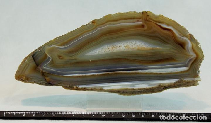 ÁGATA OCRE CON ZONA CENTRAL CRISTALIZADA 80 X 210 X 5 MM (Coleccionismo - Mineralogía - Otros)