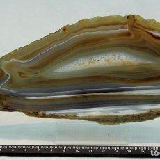 Coleccionismo de minerales: ÁGATA OCRE CON ZONA CENTRAL CRISTALIZADA 80 X 210 X 5 MM. Lote 69903689