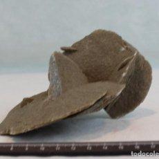 Coleccionismo de minerales: ROSA DEL DESIERTO. FLOR DE ARENA. DESIERTO DE SAHARA. PESO: 498 GR. DIMENSIONES:15 X 13 X 9 CM.. Lote 83082762