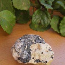 Coleccionismo de minerales: ESPECIMEN DE CERUSITA. Lote 69830241