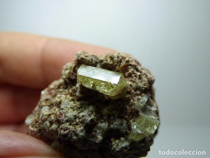 Coleccionismo de minerales: FD MINERALES: APATITO EN MATRIZ - LA CELIA - JUMILLA - MURCIA - ESPAÑA - MU 33 - Foto 9 - 104981611
