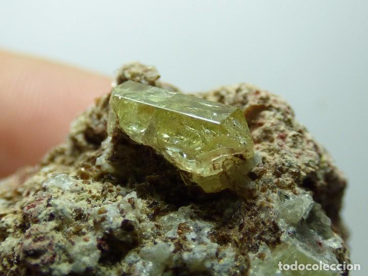 Coleccionismo de minerales: FD MINERALES: APATITO EN MATRIZ - LA CELIA - JUMILLA - MURCIA - ESPAÑA - MU 33 - Foto 10 - 104981611