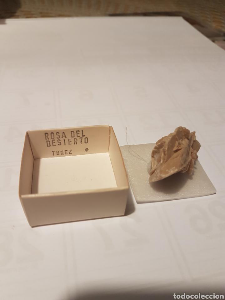 Coleccionismo de minerales: rosa del desierto tunez - Foto 2 - 107745622