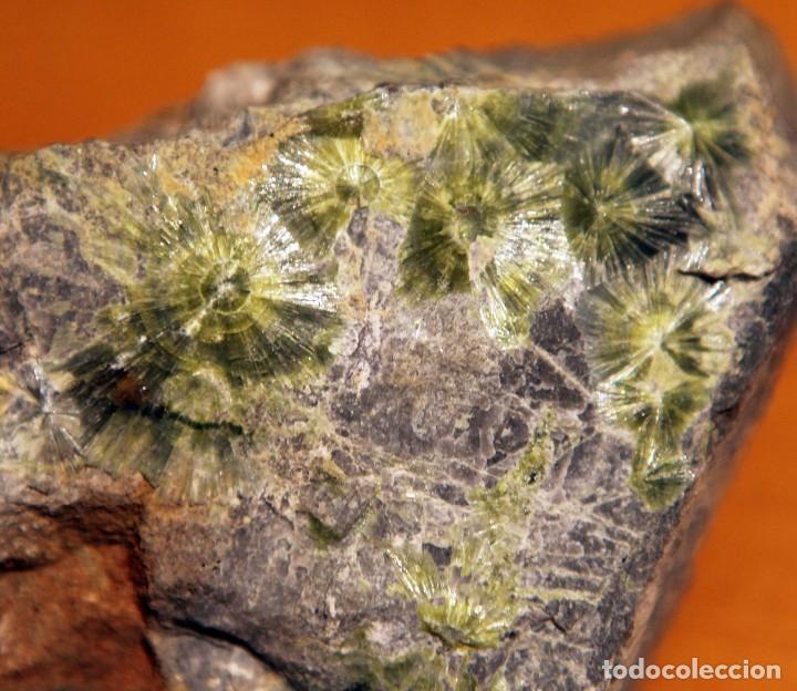 Coleccionismo de minerales: Wavellita procedente de Arkansas - Foto 2 - 111517295
