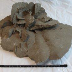 Coleccionismo de minerales: ROSA DEL DESIERTO.FLOR DE ARENA.DESIERTO DE SAMALAYUCA.PESO:3.600 GR.DIMENSIONES: 24 X 31 X 13 CM.. Lote 69812582