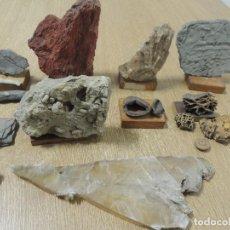 Coleccionismo de minerales: COLECCION MINERALES Y FOSILES. Lote 119192624