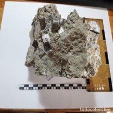 Coleccionismo de minerales: MINERAL DE PIRITA, NAVAJUN, LA RIOJA.EN MATRIZ OFERTON EN TODOCOLECCIÓN.. Lote 128693715