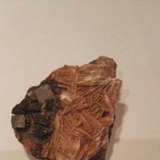 Coleccionismo de minerales: ROSA DEL DESIERTO. Lote 136176962