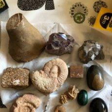 Coleccionismo de minerales: LOTE DE PIEDRAS Y FÓSILES A IDENTIFICAR. Lote 136259168