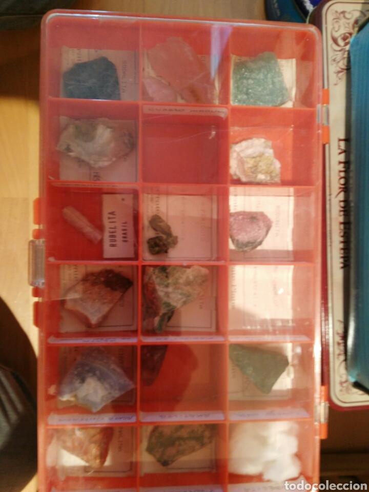 Coleccionismo de minerales: 9 CAJAS DE MINERALES, COLECCION - Foto 2 - 136591926