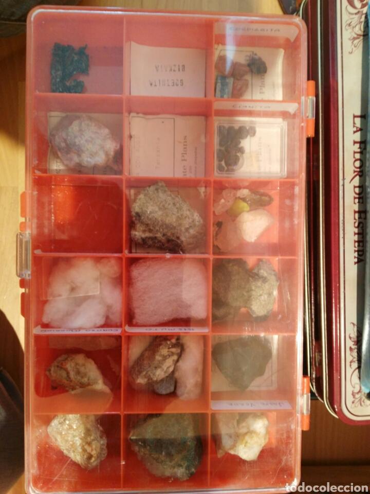 Coleccionismo de minerales: 9 CAJAS DE MINERALES, COLECCION - Foto 3 - 136591926