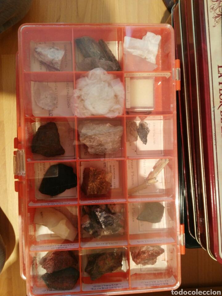Coleccionismo de minerales: 9 CAJAS DE MINERALES, COLECCION - Foto 4 - 136591926