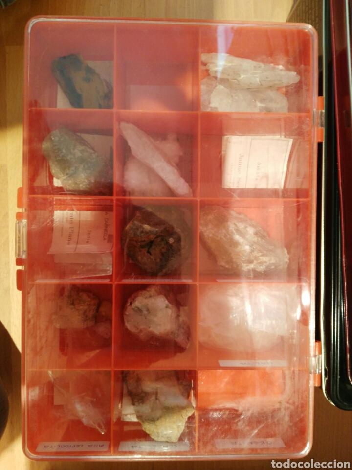 Coleccionismo de minerales: 9 CAJAS DE MINERALES, COLECCION - Foto 6 - 136591926